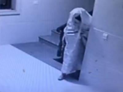 عمارت کے سی سی ٹی وی کیمرہ پر اچانک 'بھوت' نمودار، سکیورٹی اہلکار کی چیخ نکل گئی، لیکن پھر غور سے دیکھا تو یہ دراصل کیا چیز تھی؟ دیکھ کر پولیس بھی دنگ رہ گئی کیونکہ وہ تو۔۔۔