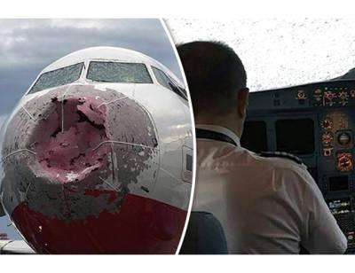 دوران پرواز ژالہ باری سے جہاز کی ناک اور ونڈ سکرین ٹوٹ گئی، پھر پائلٹ نے جہاز لینڈ کیسے کروایا؟ جان کر آپ بھی داد دئیے بغیر نہ رہ پائیں گے
