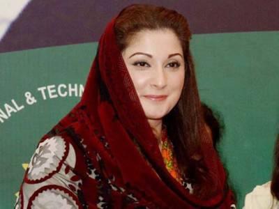 مریم کی ممکنہ نااہلی، نواز شریف کا پوتے اور نواسے کو سیاسی میدان میں اتارنے کا فیصلہ