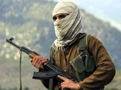 پاکستانی نہیں صرف ازبک مجاہد ہمارے ساتھ شامل ہیں، افغان طالبان
