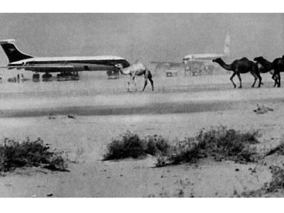 وہ وقت جب 4 مسافر جہازوں کو ایک ساتھ ہائی جیک کرلیا گیا، یہ کام کس نے اور کیوں کیا، نتیجہ کیا نکلا؟ تفصیلات جان کر آپ بھی دم بخود رہ جائیں گے
