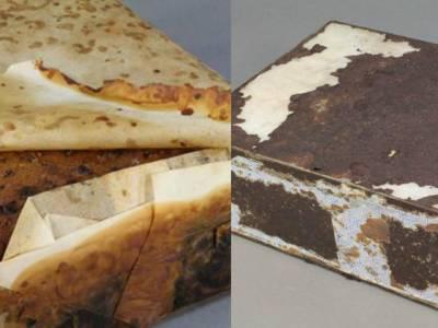 نیوزی لینڈ کے ماہرین نے انٹارکٹیکا سے 106سالہ فروٹ کیک دریافت کر لیا