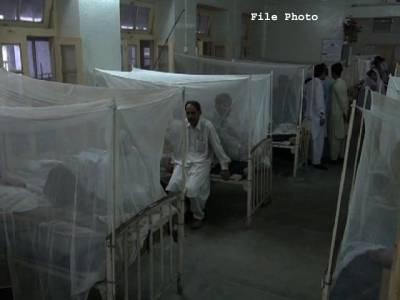 خیبر پختونخوا کے صوبائی دارالحکومت میں ڈینگی سے متاثرہ مریضوں کی تعداد 600 سے تجاوز کر گئی