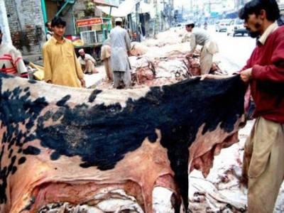 وفاقی حکومت نے عید الاضحی کے موقع پر کالعدم تنظیموں کے کھالیں جمع کرنے پر پابندی عائد کردی