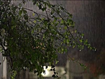 کراچی سمیت سندھ کے کئی شہروں میں تیز ہوا کے ساتھ شدید بارش ،بجلی غائب اور شہریوں کی مشکلات میں اضافہ ،کئی پروازیں تعطل کا شکار