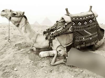 مصر میں معروف ماڈل نے اُونٹ کے ساتھ ایسی شرمناک تصویر بنوالی کہ جیل پہنچادیا گیا