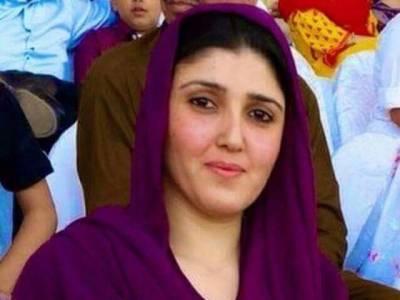 عائشہ گلالئی کیخلاف کرپشن سے متعلق درخواست خارج ، الزامات بے بنیاد ہیں، نیب