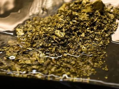 سیوریج کے پانی میں سائنسدانوں کو 18 کروڑ روپے کی قیمتی ترین چیز مل گئی، کیا چیز تھی؟ جان کر آپ کا بھی دل کرے گا کہ گٹر میں۔۔۔