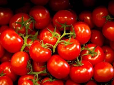 ٹماٹروں کی قلت اور قیمتوں میں اضافہ پر ہائی کورٹ نے پنجاب حکومت سے جواب طلب کرلیا