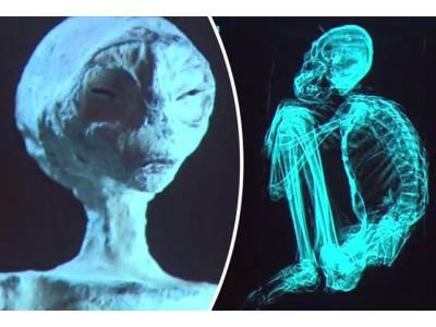 3 انگوٹھے اور 3 انگلیاں۔۔۔ کھدائی کے دوران سائنسدانوں کو انتہائی پراسرار لاشیں مل گئیں، یہ کونسی مخلوق ہے؟ جان کر آپ کے بھی ہوش اُڑجائیں گے