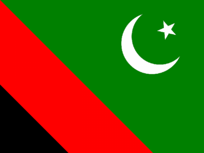 مجلس وحدت المسلمین کے لاپتہ ڈپٹی سیکرٹری جنرل ناصر شیرازی ایک ماہ بعد واپس آگئے