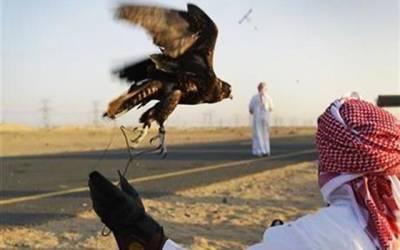 پاکستان آئے قطری شاہی وفد نے ایسا کام کردیا کہ متحدہ عرب امارات بھی خاموش نہیں رہ سکا