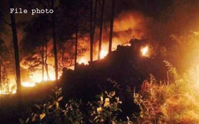 گلیات کے جنگل میں آگ بھڑک اٹھی، محکمہ جنگلات کا ایک اہلکار جاں بحق
