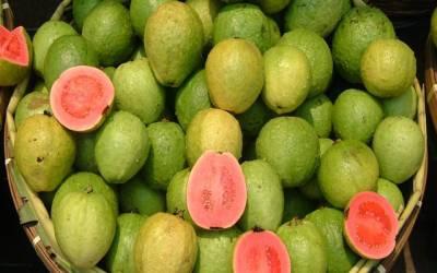 پاکستان کے تین اہم ترین پھلوں کی برآمدات میں رکاوٹ ختم کرنے کیلئے منصوبہ شروع