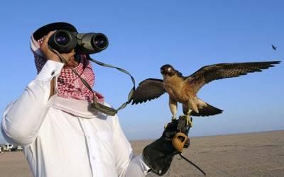 عرب امارات کے شاہی مہمان نایاب پرندوں کے شکار کیلئے سندھ کے ضلع تھر پہنچ گئے