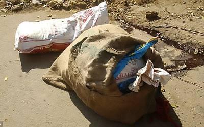 سڑک کنارے حاملہ خاتون کی لاش برآمد، اسے کیوں مارا گیا؟ پولیس کا ایساانکشاف کہ جان کر ہر شخص افسردہ ہوجائے