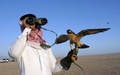 شکار کے بہانے قطری شہزادے چپکے چپکے کیا چیز پاکستان لانے لگے؟ جان کر ہر پاکستانی دنگ رہ جائے، یہ تو کسی نے سوچا بھی نہ تھا کہ۔۔۔