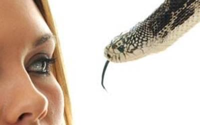 ''جب میں نے لمبی داڑھی والے سانپ دیکھے'' انتہائی عجیب و غریب خواب دیکھنے والی لڑکی نے اس سانپوں کے ساتھ پھر کیا کام کیا ،تعبیر جان کر آپ کا منہ کھلے کا کھلا رہ جائے گا