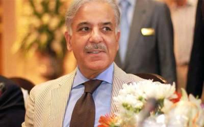 شہباز شریف بلا مقابلہ مسلم لیگ ن کے مستقل صدر منتخب ہو گئے