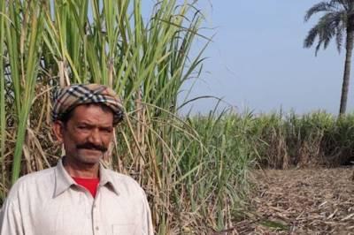 27 مارچ کو پنجاب اسمبلی کے باہر کسانوں کا احتجاج کاعلان