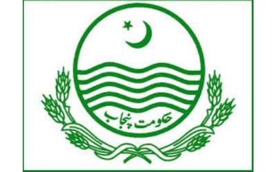 حکومت پنجاب نے مردہ مرغیوں سے پولٹری فیڈ بنانے پر پابندی لگا دی