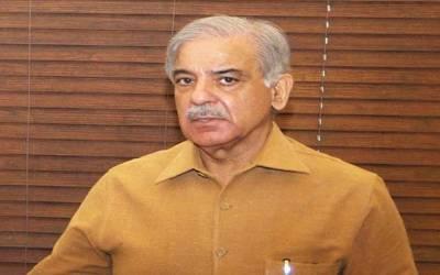 شہبازشریف کا اے این پی رہنما شاہی سید سے رابطہ، ملاقات کی دعوت دیدی