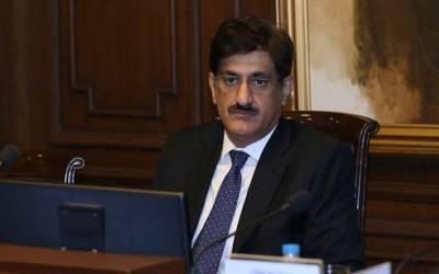 الیکشن قریب آتے ہی (ن) لیگ کے نئے صدر برساتی مینڈک کی طرح نکل آئے: مراد علی شاہ