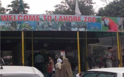 لاہور چڑیا گھر، فیملی کے بغیر کسی بھی فرد کا داخلہ ممنوع قرار