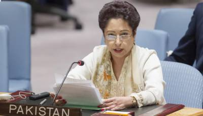 پاکستان اقوام متحدہ میں این جی او ز،یونیسیف کے ایگزیکٹوبورڈ کا رکن منتخب