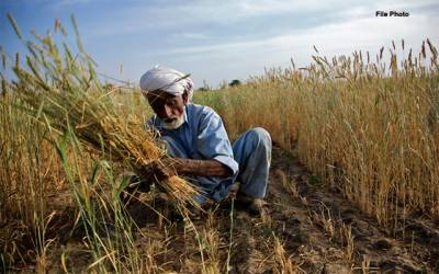 حکومت نے کسانوں کو سب سے بڑی خوشخبری سنا دی ایسی چیز پر سیلز ٹیکس کم کر دیا کہ ہر کوئی خوشی سے جھوم اٹھا