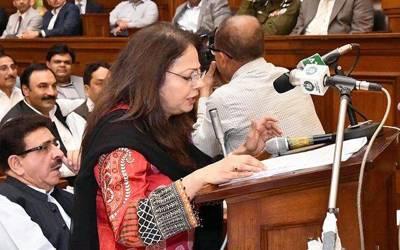 حکومت پنجاب نے 1900 ارب روپے کا ضمنی بجٹ پیش کردیا گیا