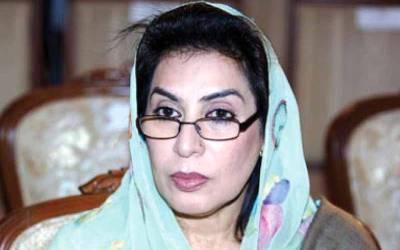 ڈاکٹر فہمیدہ مرزا کا آزاد حیثیت سے الیکشن میں حصہ لینے کا اعلان