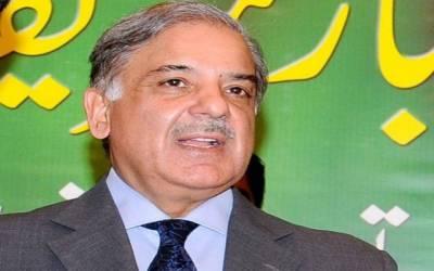 پاکستان زرداری کی لوٹ مار اور خان صاحب کے دھرنوں کیلئے نہیں بنا: شہباز شریف