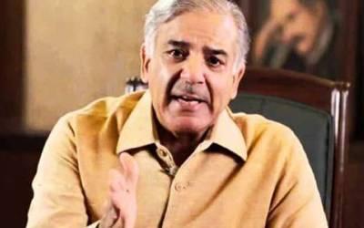 سینئر قیادت کا مشورہ ، شہباز شریف کراچی سے الیکشن نہیں لڑیں گے
