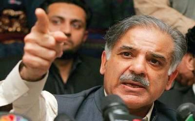 نیازی صاحب کا سیاسی ورکروں کوگدھا کہنا انسانیت کی تذلیل ہے:شہبازشریف