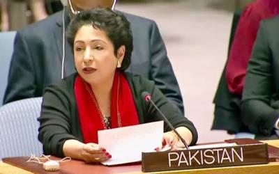 پاکستان کامہاجرین سے متعلق عالمی معاہدے پراتفاق کاخیرمقدم، عالمی سربراہان دسمبرمیں معاہدے کوحتمی شکل دیں گے:ملیحہ لودھی