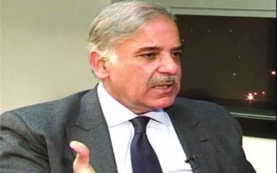 مسلم لیگ ن نے انتخابی مہم روکنے کا اعلان کردیا کیوں کہ۔۔۔