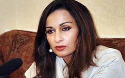 سینیٹر شیری رحمان کا خیر پور میں پیپلز پارٹی کے قافلے پر حملے کی شدید مذمت