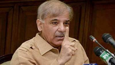 سعد رفیق، عابد شیر علی ،عبدالعلیم خان کی دوبارہ گنتی کی درخواست منظور، شہبازشریف کی مسترد