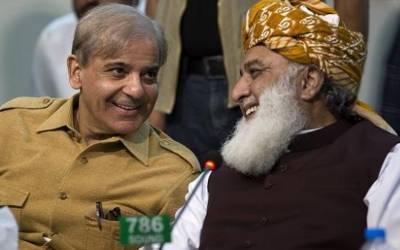 مسلم لیگ (ن)، پیپلز پارٹی سمیت چار سیاسی جماعتوں کا وزیر اعظم،سپیکر اور ڈپٹی سپیکر کے لئے مشترکہ امیدوار لانے کا فیصلہ