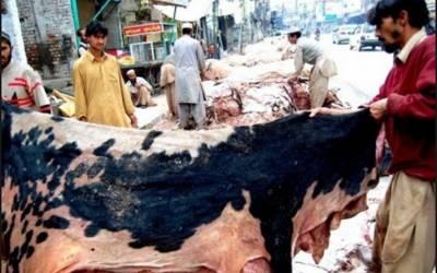 خیبر پختونخواہ اور سندھ میں عیدالالضحیٰ پربغیراجازت کھالیں جمع کرنے پرپابندی عائد، نوٹیفکیشن جاری