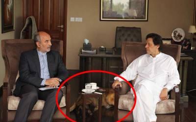 عمران خان کی ایرانی سفیر سے ملاقات کے دورا ن ان کا کتا ۔۔عمران خان نے ایسا کام کر دیا کہ پاکستانیوں کو یقین نہ آ ئے