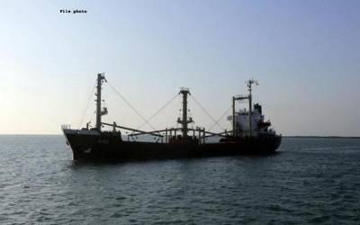 یمن نے ماہی گیروں کو عرب اتحادی جہازوں کے نزدیک آنے سے خبردار کر دیا