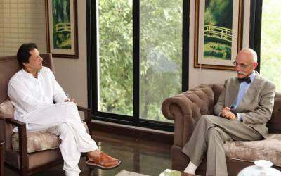 یورپی یونین کے سفیر جین فرانکوئس کاؤٹن کی چیئرمین پاکستان تحریک انصاف سے ملاقات