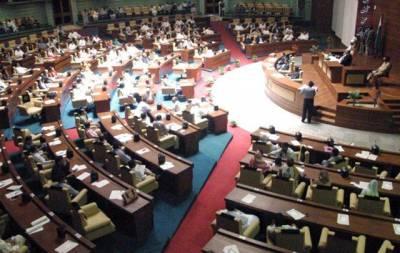 تحریک انصاف کی سندھ اسمبلی میں مخصوص نشستوں پر خواتین اور اقلیتی امیدواروں کے نام سامنے آ گئے، امیدوار کتنے اور کون ہیں؟ سب پتہ چل گیا