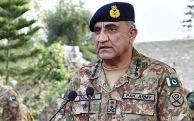 'سرسبز و شاداب پاکستان' فوج نے ایک کروڑ درخت لگانے کا اعلان کردیا