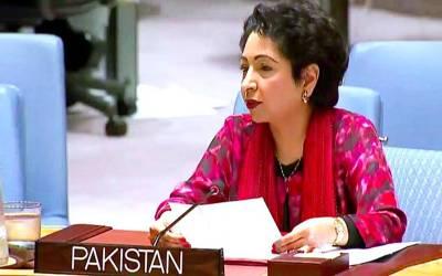 عالمی امن کےلئے پاکستان کی گرانقدرخدمات ہیں' ملیحہ لودھی