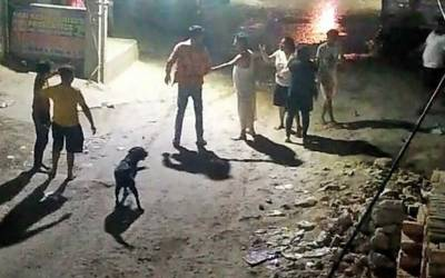 کتے سے معافی مانگنے سے انکار پر آدمی کو چھریاں مار کر قتل کر دیا گیا