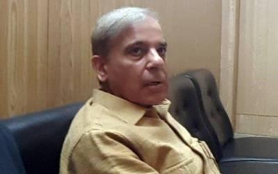 شہباز شریف کی درخواست ضمانت مسترد ہونے کےخلاف نظرثانی کی اپیل دائر
