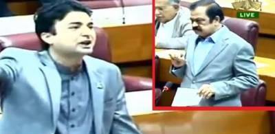"""""""بعض وزرا فل باڈی ویکس کرواتے ہیں"""" رانا ثناءاللہ نے یہ بات کہی تو آگے سے مراد سعید نے کیا جواب دیا؟ قومی اسمبلی سے دھواں دار خبر آگئی"""